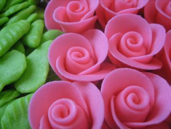 Růžičky růžové