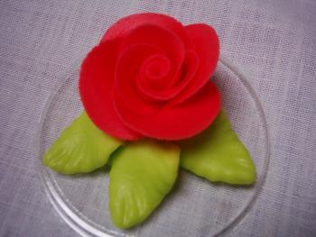 Růže velká červená