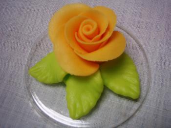 Růže velká oranžová